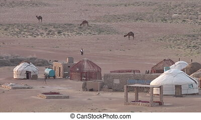 Huts, camels and locals in Uzbekistan - A wide shot of a...