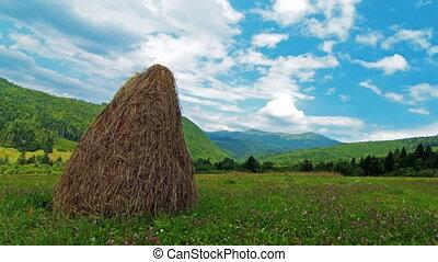 hutte, été, paysage