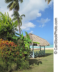 hutte, couvert chaume, plage, toit