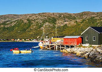 huttes, dans, norvège
