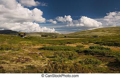 huttes, dans, paysage, de, norvège