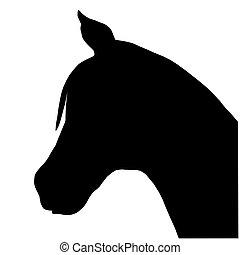 huvud, häst, hals