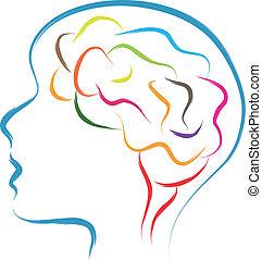 huvud, hjärna