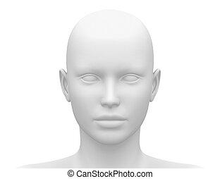 huvud muskel, -, anatomi, kvinnlig, främre del