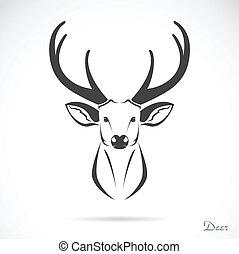 huvud, vektor, hjort, avbild