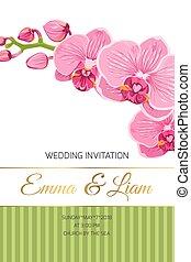 huwelijk uitnodiging, kaart, roze orchidee, phalaenopsis