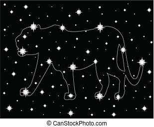 hvězda, nebe, večer