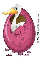 hvid, and, udklække, ægget