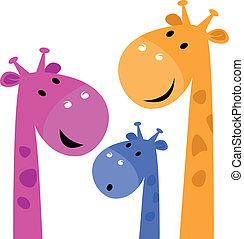 hvid, giraf, familie, farverig, isoleret