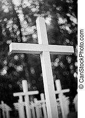 hvid, kors, hos, den, militær, cemetery.