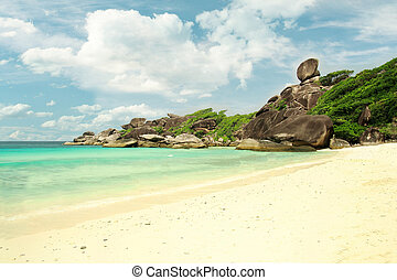 hvid sand, strand, ø, hos, kokosnød håndflade
