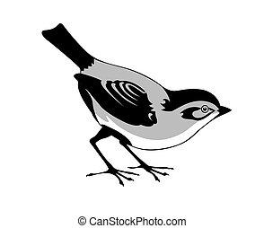 hvid, vektor, silhuet, fugl, baggrund