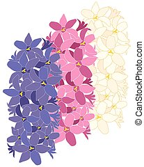 Hyacinth flower design