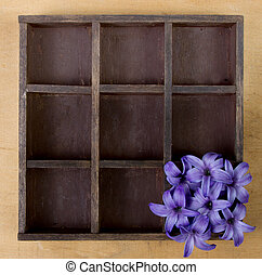 hyacinth flowers alone in a wooden box