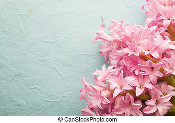 Hyacinth. - Pink hyacinth in a wooden table.