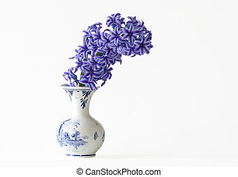 Some pretty purple Hyacinths in a vase