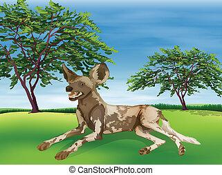 Hyaena - Illustration of a hyaena