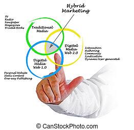 Hybrid Marketing