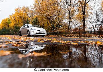 hybride, auto, auf, herbst, straße, in, regnerischer tag
