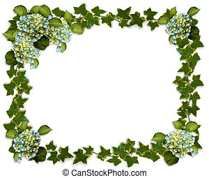 Hydrangea flowers and ivy Image and illustration composition for background, invitation or template with copy space.