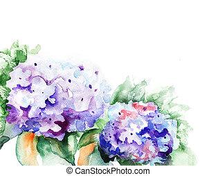 Hydrangea blue flowers, watercolor illustration