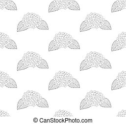 Hydrangea Flower Seamless on White Background