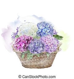 hydrangea flowers in a basket. Watercolor .