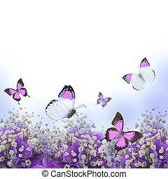 hydrangeas, flores, azul, mariposa, ramo