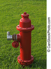 hydrant on a green lawn