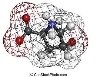 Hydroxyproline (Hyp) collagen building block, molecular...