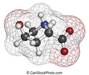 hydroxyproline, kollagen, komponente, (hyp), acid., wesentlich, amino