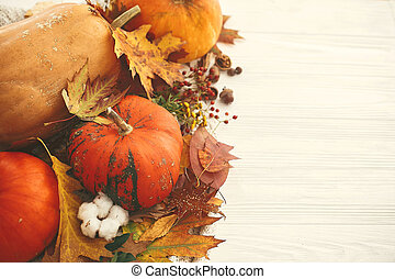 Hygge lifestyle, cozy autumn mood. Happy Thanksgiving. Pumpkins with fall leaves, cotton, cinnamon, anise, acorns, nuts, berries, autumn flowers on white knitted sweater.