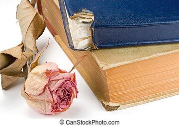 hymn, rocznik wina, książki