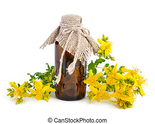 Hypericum with pharmaceutical bottle isolated