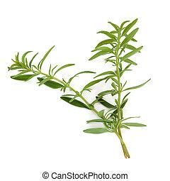 Hyssop Herb Leaves