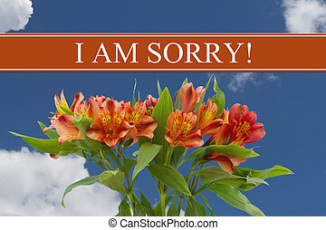 I am Sorry message with a orange and yellow lilies bouquet