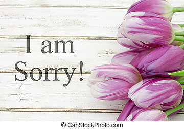 I am sorry chalk drawing i am so sorry pictures search i am sorry thecheapjerseys Images