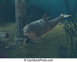 I belong to the sea - 3D-illustration of a dolphin under the...