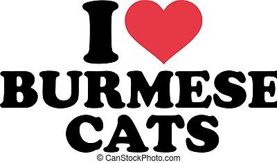 I love burmese cats