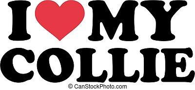 I love Collie