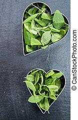 I love fresh Herbs (conceptual)