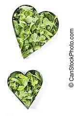 I Love Fresh Herbs (Parsley)