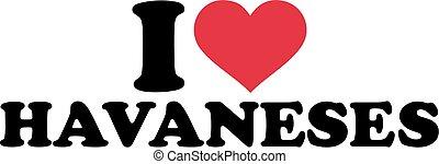I love Havaneses
