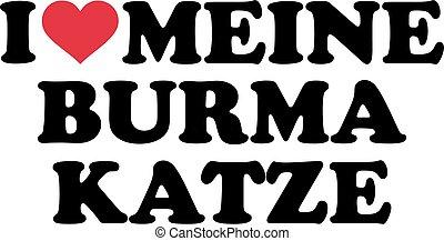 I love my burmese cat german