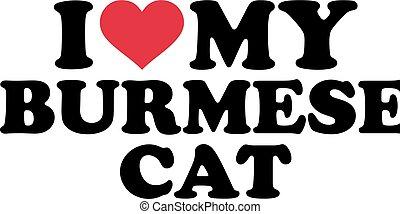 I love my burmese cat