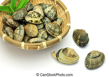 short-necked clam - I put many short-necked clams in a...