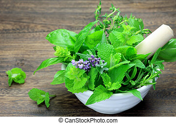 herb - I put various herb in tableware and I took it at a ...
