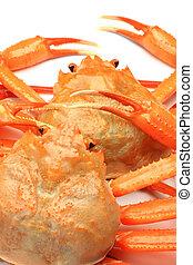 deep red snow crab