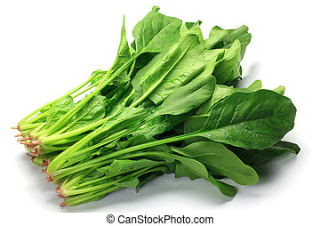 I took spinach in a white background.