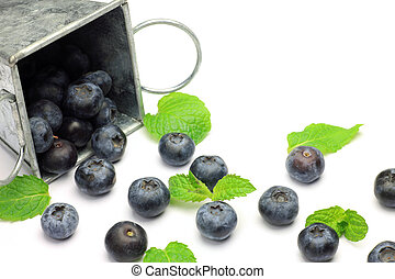 blueberry - I took the state that a blueberry spilled out...